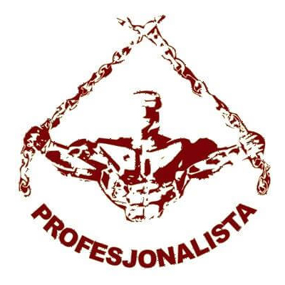 profesjonalista